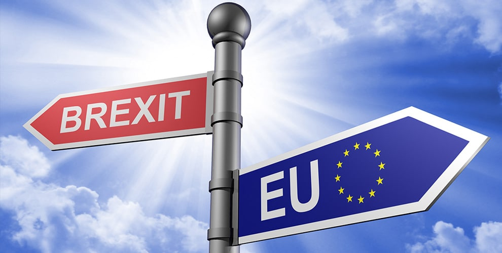 Brexit : Leave's Victory