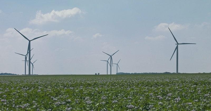 Éolien : fausse promesse écologique, politique du vent et mensonges